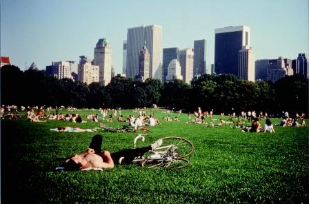 セントラル・パーク Central Park  (16mm)