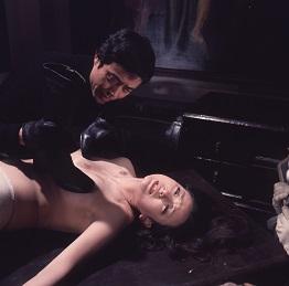 ラブハンター 熱い肌 (R-18)(DVD)