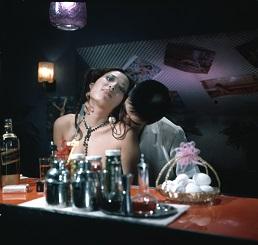 真夜中の妖精(デジタル)
