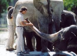 動物園 Zoo(16mm)