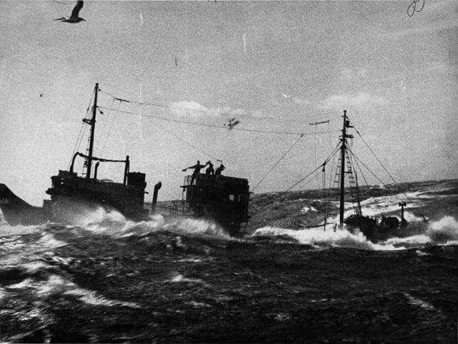 海に生きる 遠洋底曳漁船の記録(デジタル)
